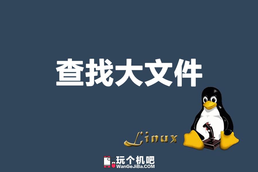 Linux系统查找占用磁盘体积最大的10个文件